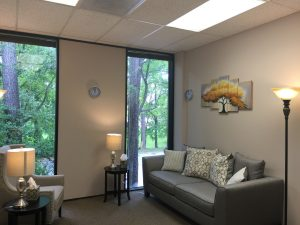 An empty counseling room. A single chair facing an empty sofa. A beautiful view of trees out the window.