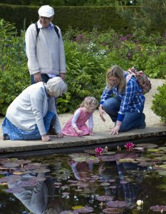 A mother, her young daughter, and a grandmother kneel down to look at a pond covered in Lilly pads. The young girl's other grandparent stands behind the group.